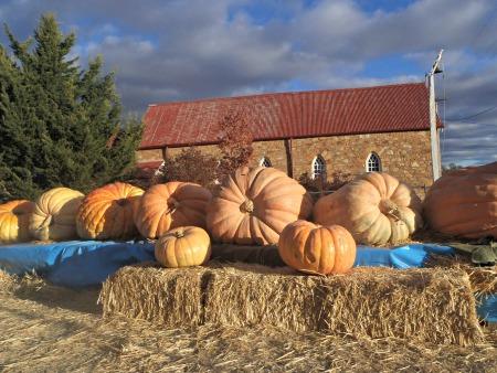 Collector Village Pumpkin Festival Church