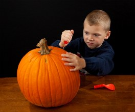 pumpkin decorating kits