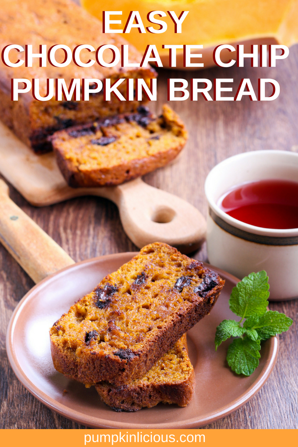 Perfect for fall breakfast, this easy chocolate chip pumpkin bread is moist, healthy and delicious. Add this to your best holidays recipes stash. #pumpkin #chocolatechip #pumpkinbread #fallrecipes #holidayrecipes #thanksgiving #thanksgivingrecipes
