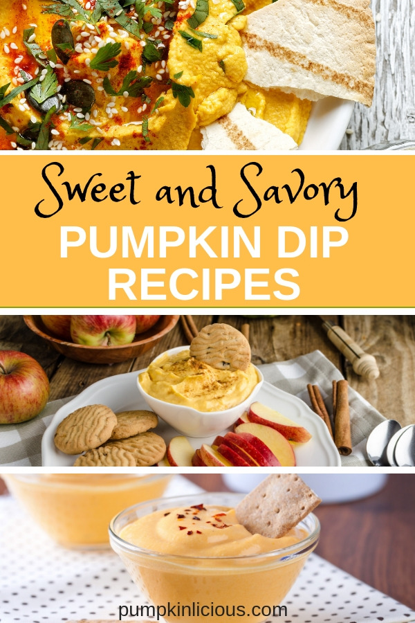 Looking for some easy to make, sweet and savory pumpkin dip recipes for fall? Make savory dips with cream cheese and flavored salts and sweet dips with cinnamon and cool whip. YUM! Many dip recipes are made with only 3 ingredients: simple and quick. #diprecipes #falldips #partydips #pumpkindips #pumpkinrecipes #fallrecipes #thanksgiving #Christmasappetizers