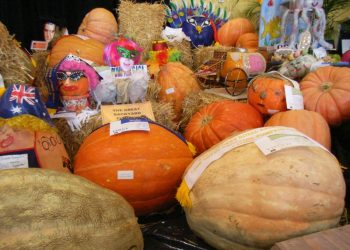 Pumpkin Festival Listings Worldwide