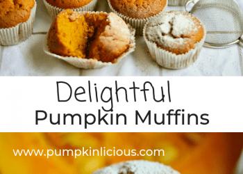moist pumpkin muffins
