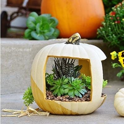pumpkin planter craft