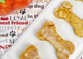 apple pumpkin dog biscuits