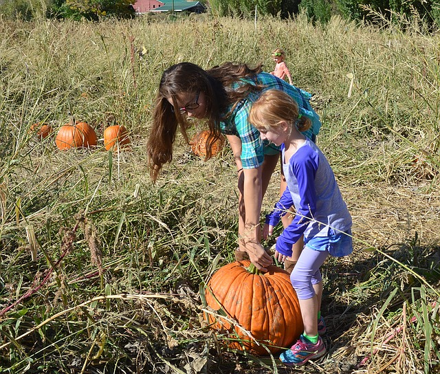 how to decide what to wear to the pumpkin patch