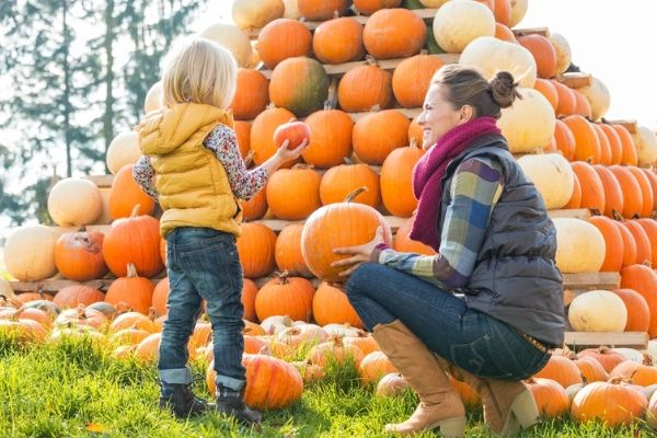 pumpkin patch outfit ideas for women