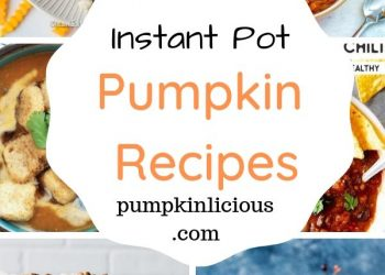 instant pot pumpkin recipes