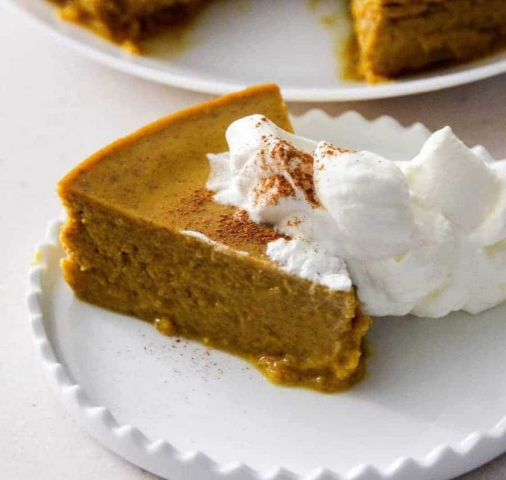 Pressure Cooker Keto Low carb Pumpkin pie pudding