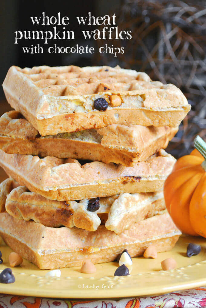 Whole Wheat Pumpkin Waffles with Chocolate Chips