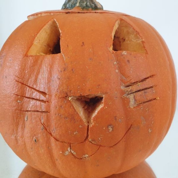 pumpkin cat face carving