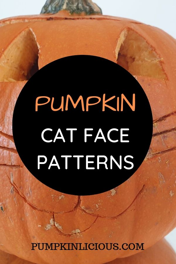 Pumpkin cat face pattern