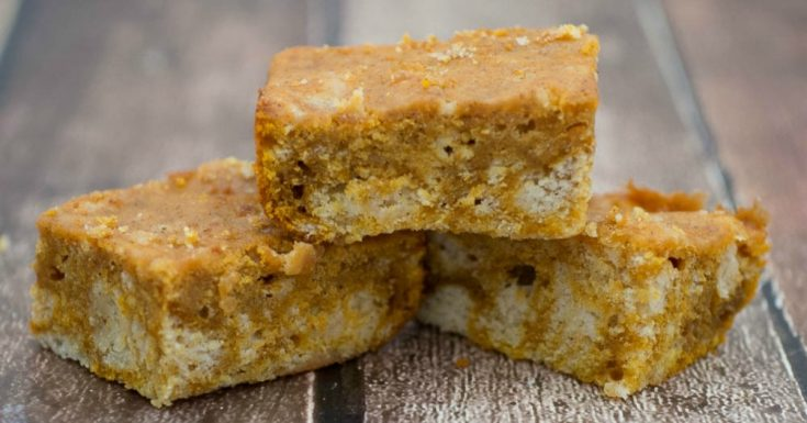 White Chocolate Pumpkin Bars