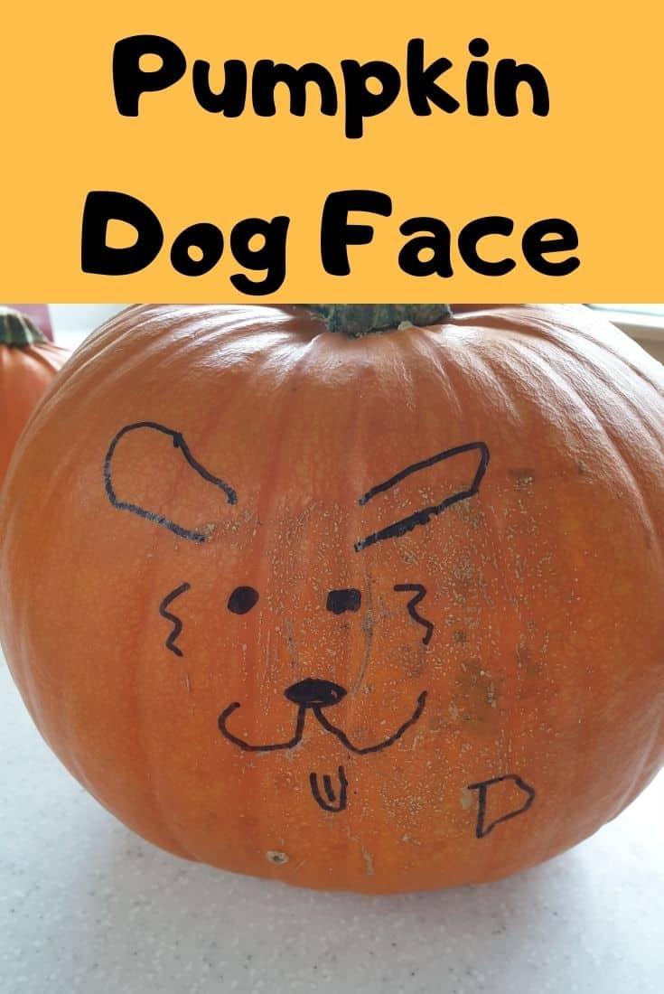 No carve Pumpkin Dog Face